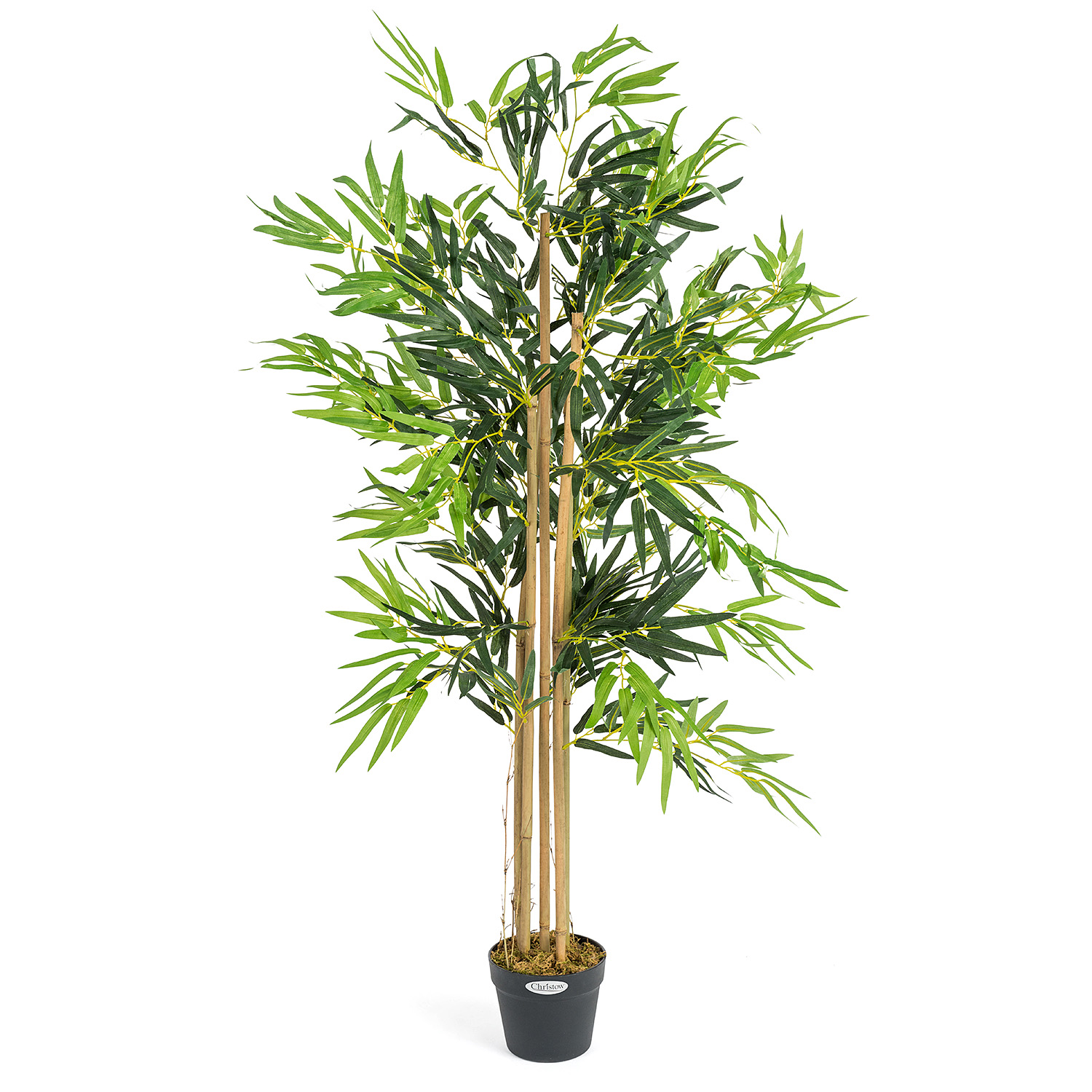 Image of Artificial Bamboo Plant - 4ft