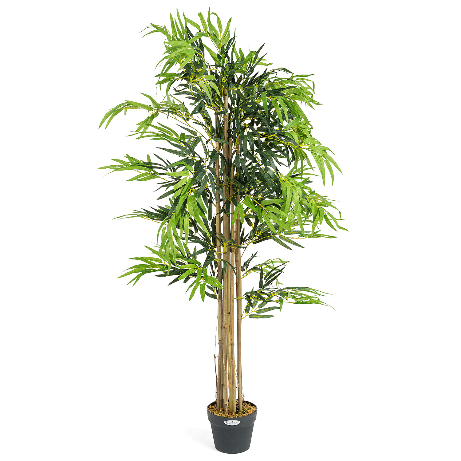 Image of Artificial Bamboo Plant - 5ft